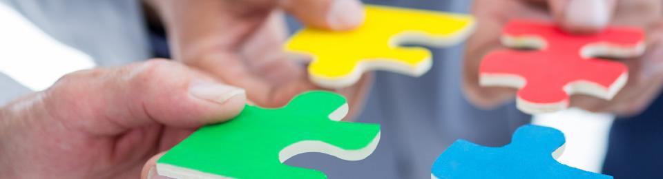 再生可能エネルギー分野企業ネットワークの形成